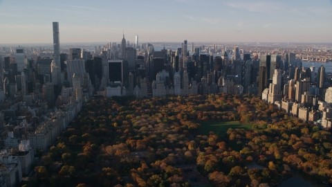 AX118_194.0000163F - Aerial stock photo of Central Park trees with autumn leaves beside Midtown skyscrapers at sunrise in New York City