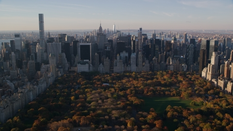 AX118_195.0000126F - Aerial stock photo of Autumn leaves on Central Park trees by Midtown at sunrise in New York City