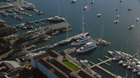 AX144_238.0000000 - Aerial stock photo of Yachts and sailboats docked at piers in Newport, Rhode Island