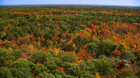 AX147_283.0000024 - Aerial stock photo of A colorful forest in autumn, Biddeford, Maine