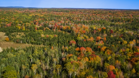 AX148_036.0000011 - Aerial stock photo of A colorful forest in autumn, Cushing, Maine