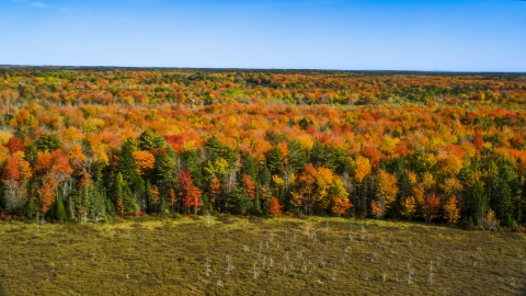 AX148_041.0000034 - Aerial stock photo of A colorful forest landscape in autumn, Cushing, Maine