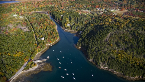 AX148_155.0000000 - Aerial stock photo of Seal Cove and waterfront homes, autumn, Tremont, Maine