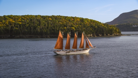 AX148_198.0000184 - Aerial stock photo of A sailing ship near an island with partial fall foliage, Bar Harbor, Maine