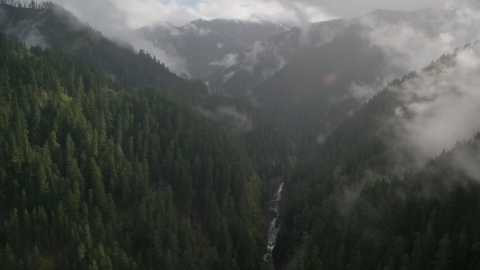 AX154_048.0000236F - Aerial stock photo of A misty canyon and Eagle Creek Trail, Cascade Range, Hood River County, Oregon