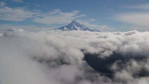 AX154_062.0000242F - Aerial stock photo of Cloud layer near snowy Mount Hood, Cascade Range, Oregon