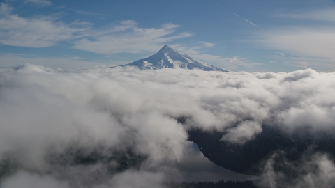 AX154_063.0000000F - Aerial stock photo of Above clouds near snowy Mount Hood, Cascade Range, Oregon