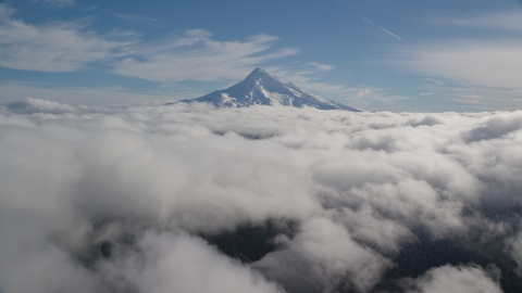 AX154_063.0000334F - Aerial stock photo of Above clouds with a view of snowy Mount Hood, Cascade Range, Oregon