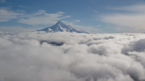 AX154_064.0000250F - Aerial stock photo of The snowy summit of Mount Hood above the clouds, Cascade Range, Oregon
