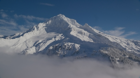 AX154_078.0000345F - Aerial stock photo of The top of snow-covered Mount Hood, Cascade Range, Oregon