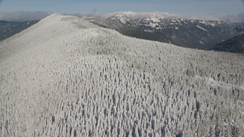 AX154_102.0000220F - Aerial stock photo of Forest on a snowy mountain ridge in the Cascade Range, Oregon