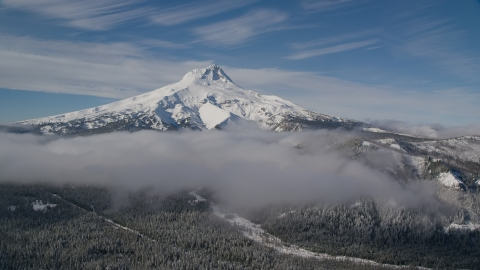 AX154_109.0000237F - Aerial stock photo of Low clouds over evergreen forest near the peak covered in snow, Mount Hood, Cascade Range, Oregon
