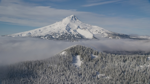 AX154_112.0000331F - Aerial stock photo of Mount Hood behind low clouds and a snow forest in the Cascade Range, Oregon