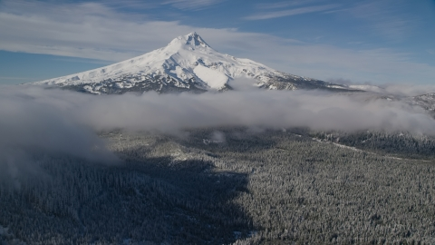 AX154_118.0000000F - Aerial stock photo of Snowy mountain peak with low clouds over forest, Mount Hood, Cascade Range, Oregon