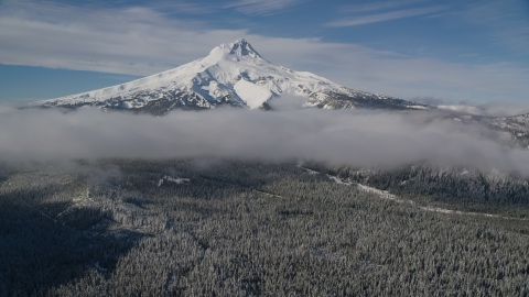 AX154_118.0000335F - Aerial stock photo of A snowy mountain peak, low clouds, and forest, Mount Hood, Cascade Range, Oregon