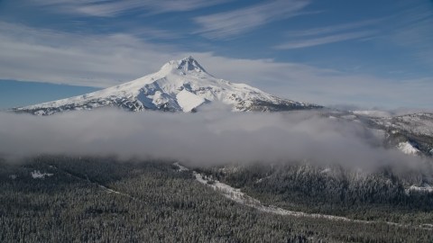 AX154_119.0000258F - Aerial stock photo of Snow-capped peak and low clouds over forest, Mount Hood, Cascade Range, Oregon