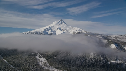 AX154_120.0000225F - Aerial stock photo of Low clouds over forest at the base of snow-capped Mount Hood, Cascade Range, Oregon