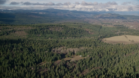 AX154_135.0000220F - Aerial stock photo of Evergreen forest, logging and farm areas near Parkdale, Oregon