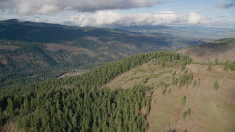 AX154_146.0000383F - Aerial stock photo of Evergreen forest and logging areas, Dee, Oregon