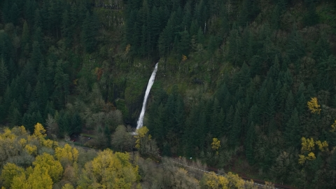 AX154_186.0000106F - Aerial stock photo of A waterfall and forest on the Oregon side of Columbia River Gorge