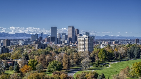 DXP001_000157 - Aerial stock photo of The city's skyline viewed from a park with tall trees, Downtown Denver, Colorado