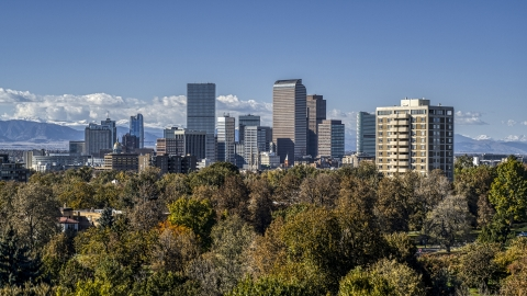 DXP001_000160 - Aerial stock photo of The skyline's tall skyscrapers seen from a cluster of trees, Downtown Denver, Colorado