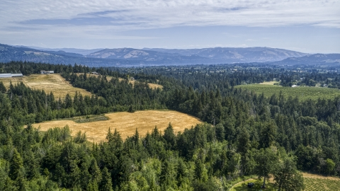 DXP001_017_0019 - Aerial stock photo of Evergreen trees and brown hills in Hood River, Oregon