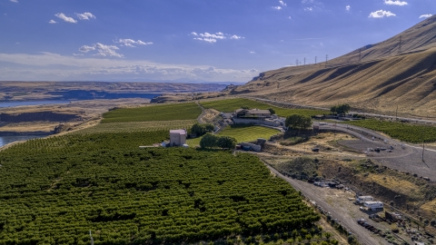 DXP001_018_0009 - Aerial stock photo of The Maryhill Winery and vineyards by the Columbia River in Goldendale, Washington