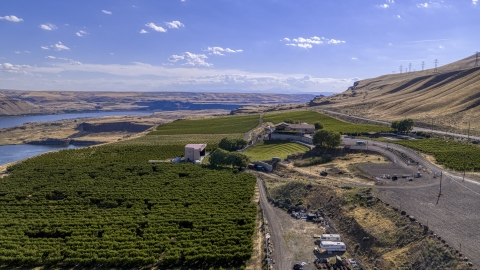 DXP001_018_0010 - Aerial stock photo of Wide view of Maryhill Winery and vineyards beside the Columbia River in Goldendale, Washington