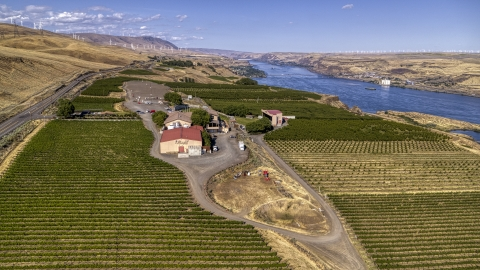 DXP001_018_0020 - Aerial stock photo of Maryhill Winery and vineyard by the Columbia River in Goldendale, Washington