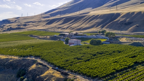 DXP001_019_0005 - Aerial stock photo of The Maryhill Winery, amphitheater, and vineyard in Goldendale, Washington