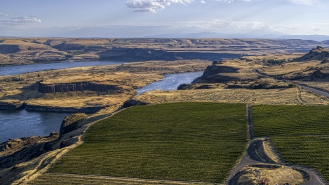DXP001_019_0022 - Aerial stock photo of Miller Island and the Columbia River seen from Maryhill Winery in Goldendale, Washington