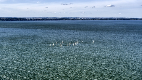 DXP002_160_0004 - Aerial stock photo of Sailboats on Lake Mendota, Madison, Wisconsin