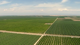 AF0001_000001 - HD stock footage aerial video of flying by farmland, Central Valley, California