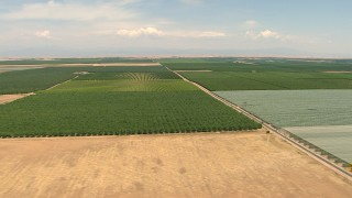 AF0001_000003 - HD stock footage aerial video flyby a farmhouse and fields with crops in the Central Valley, California