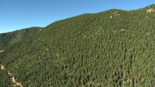 AF0001_000082 - HD stock footage aerial video flyby a mountain ridge covered with evergreen trees in the Rocky Mountains, Colorado