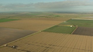 AF0001_000212 - HD stock footage aerial video of flying by wide crop fields in Matagorda County, Texas
