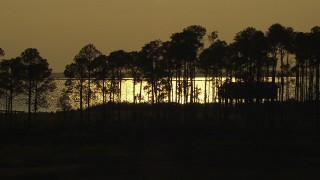 AF0001_000428 - HD stock footage aerial video of isolated home overlooking the bay at sunset, Gulf Coast, Alabama