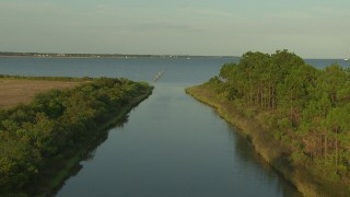 AF0001_000435 - HD stock footage aerial video follow a river toward the bay as a bird takes flight, Gulf Coast, Alabama