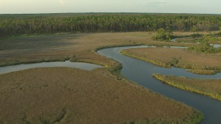 AF0001_000438 - HD stock footage aerial video fly over winding river and wetlands to approach the forest edge at sunset, Gulf Coast, Alabama