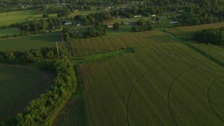 AF0001_000449 - HD stock footage aerial video of flying away from rural homes and crop fields at sunset, Gulf Coast, Alabama
