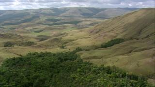 AF0001_000540 - HD stock footage aerial video flying by wooded hillside, tilt  revealing savanna, Southern Venezuela