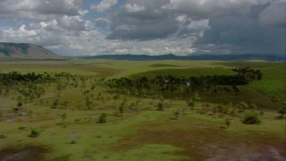AF0001_000645 - HD stock footage aerial video pass green hills and palm trees in savanna, Southern Venezuela