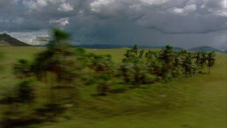 AF0001_000648 - Aerial stock footage of Tilt from savanna to reveal palm trees and mountains in Southern Venezuela