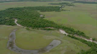 AF0001_000661 - HD stock footage aerial video fly over a winding river through patches of jungle in Southern Venezuela