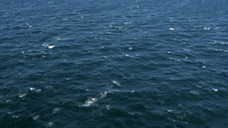 AF0001_000824 - HD stock footage aerial video of a reverse view of the surface of the Atlantic Ocean