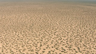 AF0001_000896 - HD stock footage aerial video fly over desert plants in a flat plain in New Mexico