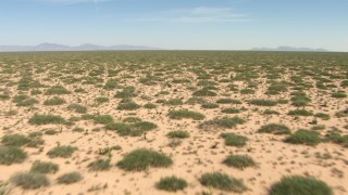 AF0001_000900 - HD stock footage aerial video fly low over desert plants in an arid plain in New Mexico