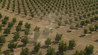 AI06_FRM_005 - 1080 stock footage aerial video orbiting a tractor driving by rows of crops, zoom out, Central Valley, California