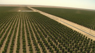 AI06_FRM_012 - 1080 stock footage aerial video fly over rows of crops, aqueduct, manmade lake, Central Valley, California